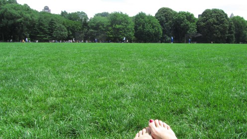 The Great Lawn at Central Park - New York, USA